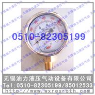 Y-100(0-40MPA)压力表 Y-100(0-40MPA)【现货供应】