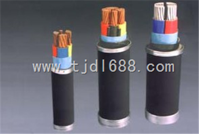 铠装屏蔽电缆RVVP22 RVVP2-22电缆线