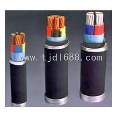 VV22/VLV22铠装护套电力电缆【VV/VLV护套电力电缆】