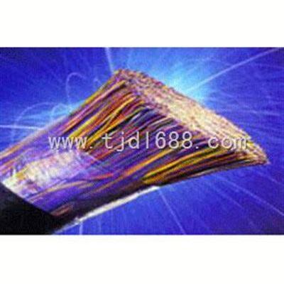 齐全HYAT53 防鼠通信电缆型号 HYAT53电缆