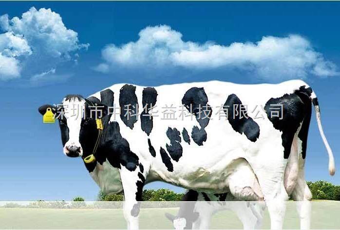 zk-rfid609-uhf动物耳标标签-深圳市中科华益科技