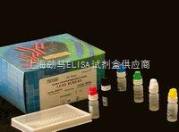 猫p27核心抗原试剂盒