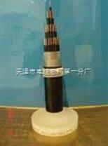 VV22天联电力电缆