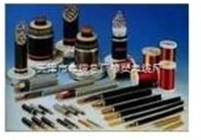 铠装防水防鼠电力电缆FS-YJLV22(23)