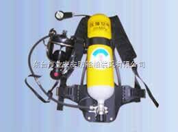 RHZK5/30、RHZK6/30 空气呼吸器,消防呼吸器