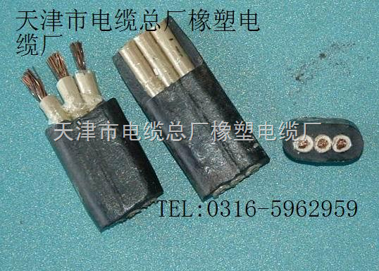 【详细说明】 hs电缆-防水橡套软电缆产品说明 结构示意