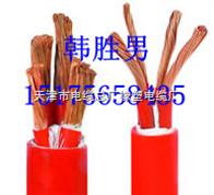 JBQ电机接引线天津电缆