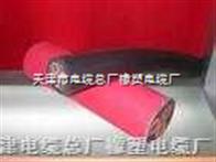 JBQ电机接引线电线电缆
