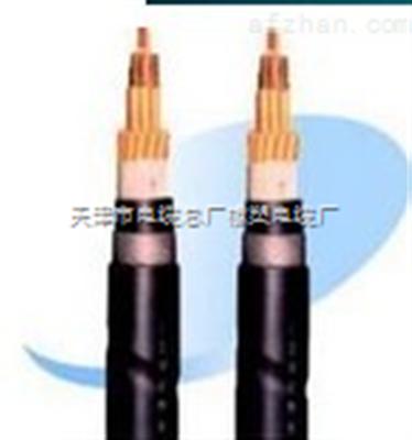 MKVVP22电缆,MKVVP22电缆厂家