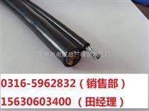 HYA通信电缆规格20*2*0.8  20*2*0.9型号齐全报价