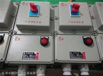 BLK51-100/4防爆断路器