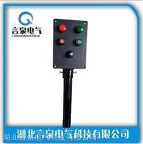BZC8060-系列防爆防腐操作柱IP66 WF2 ExdIIT6