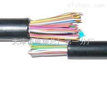 SBYV-32*2*0.5交换机电缆