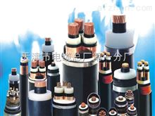 防潮防水电力电缆FS-YJA FS-YJY FS-YJY23