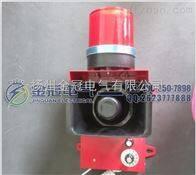 TGSG-09大功率声光报警器