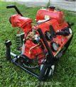 东发V20E(S)手抬消防泵