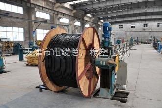 CEFR/DA船用电缆