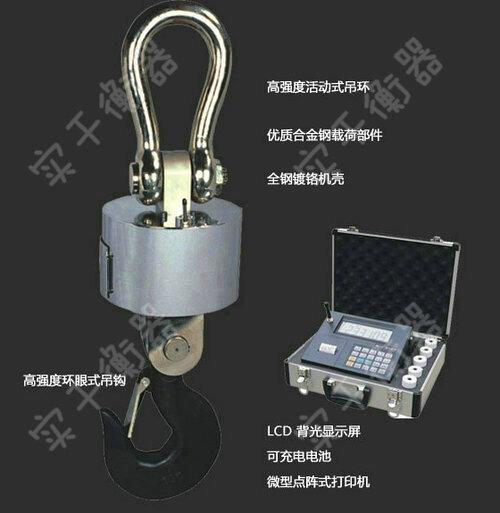 SG-OCS E吊钩电子秤
