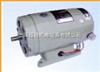 Z100/20-220,Z100/40-220 电磁式并(他)励直流电动机