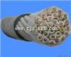 DDJVVRP电缆DJVVRP屏蔽计算机电缆