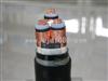 煤矿控制电缆MKVV22 MKVV22矿用控制电缆小猫